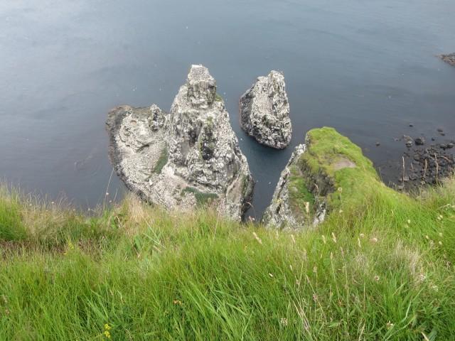 2232 puffin rock