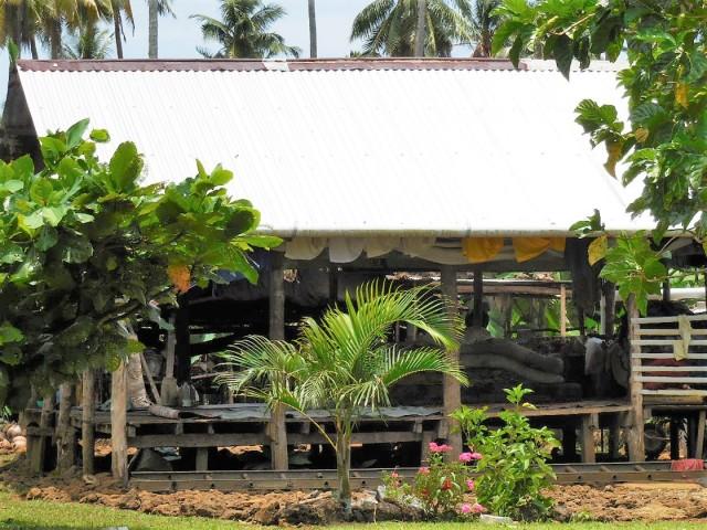 Apia Samoa 12