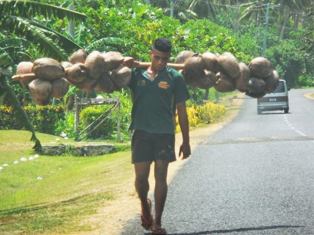 Apia Samoa 21