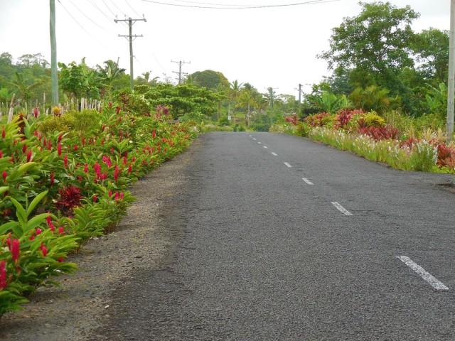 Apia Samoa 30